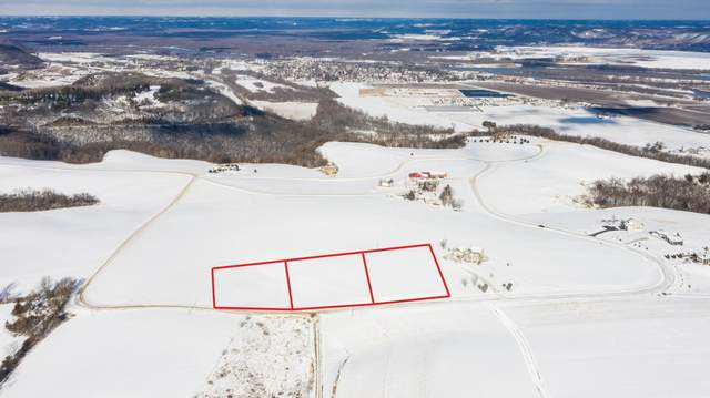 Lot 9 Bl 4 667th St, Wabasha, MN 55981 (#5571092) :: The Pietig Properties Group