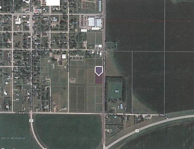xxx Grove Lake Avenue, Villard, MN 56385 (#5575609) :: Twin Cities South