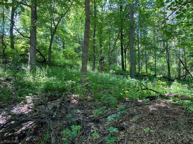 Lot 9, Blk 3 West Avenue, Red Wing, MN 55066 (#5581359) :: Holz Group