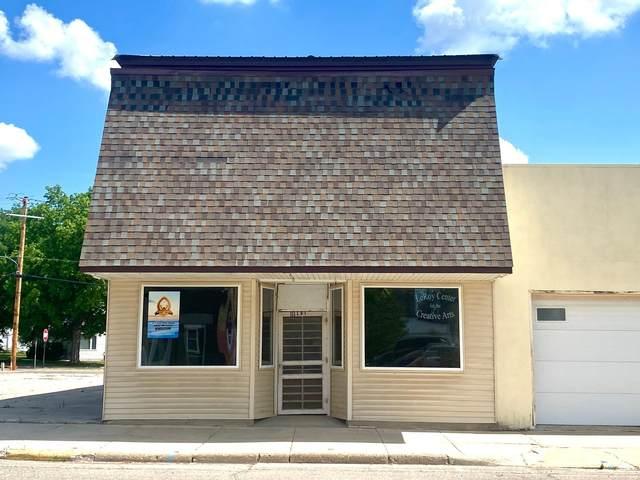 111 E Main Street, Le Roy, MN 55951 (#5608243) :: Lakes Country Realty LLC