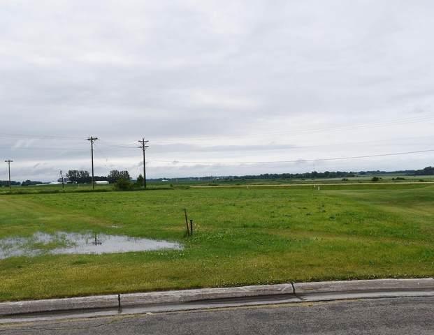 TBD NE Mossy Creek Drive, Owatonna, MN 55060 (#5610940) :: Bos Realty Group