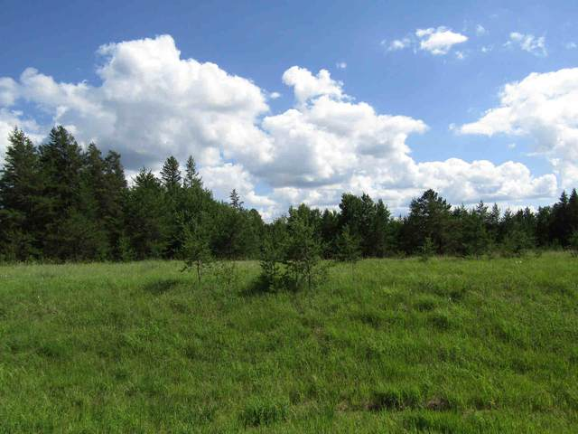 TBD County Road 41, Park Rapids, MN 56470 (#5621257) :: The Preferred Home Team