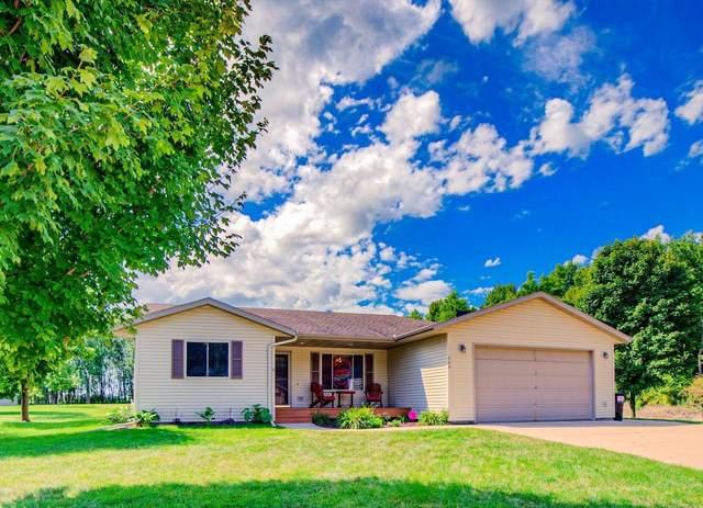 149 Woodland Drive, Henderson, MN 56044 (#5635056) :: Bre Berry & Company