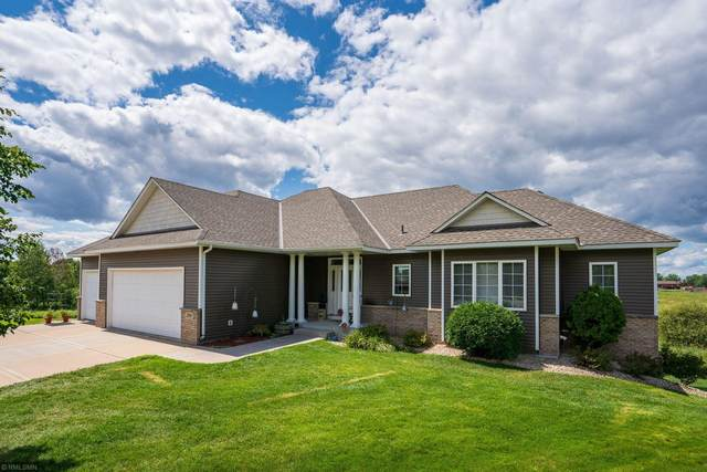 299 141st Avenue NW, Andover, MN 55304 (#5636423) :: Tony Farah | Coldwell Banker Realty