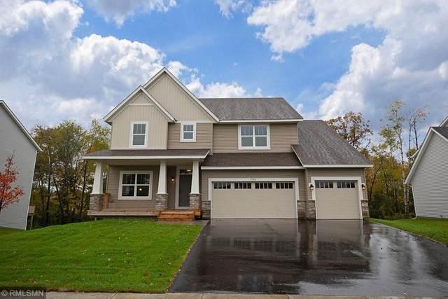 17005 61st Street NE, Otsego, MN 55330 (#5637898) :: Tony Farah | Coldwell Banker Realty