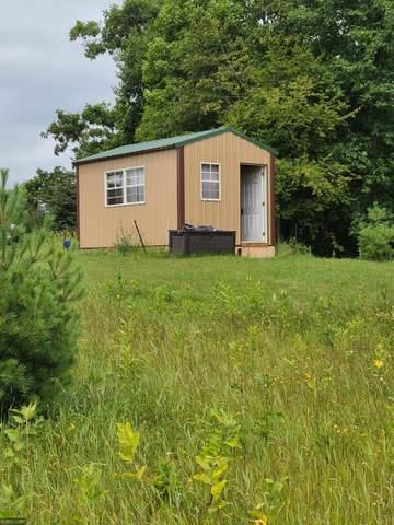 XXX 455th Place, Hazelton Twp, MN 56431 (#5638777) :: Servion Realty
