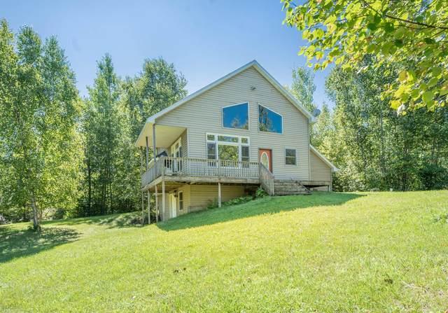 57328 Otter Ridge Trail, Bigfork, MN 56628 (#5643918) :: Servion Realty