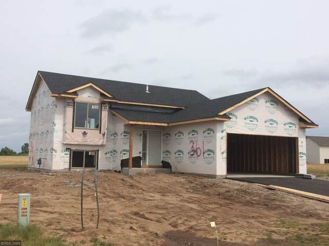 310 Ladd Lane, Osceola, WI 54020 (#5652409) :: Straka Real Estate