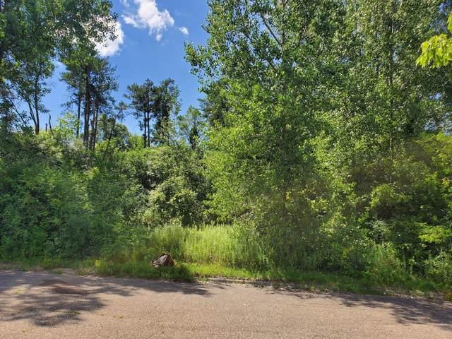 15xxx Buck Hill Road, Burnsville, MN 55306 (#5653556) :: Twin Cities South