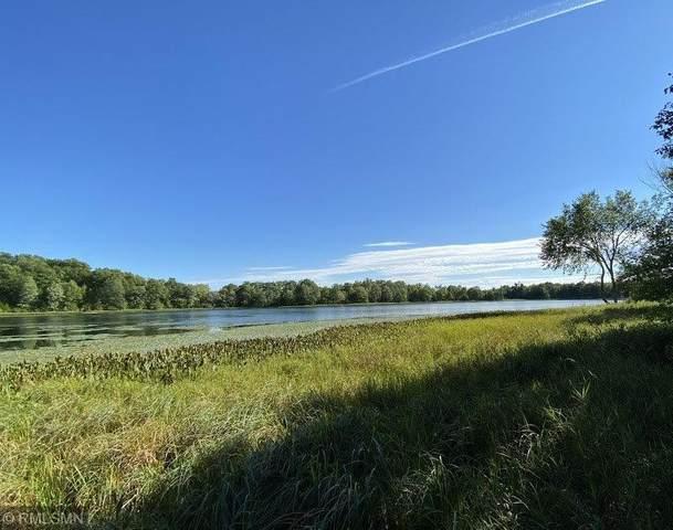 LOT 2 TBD Wilson Lake Drive, Deerwood, MN 56444 (#5654129) :: The Pietig Properties Group