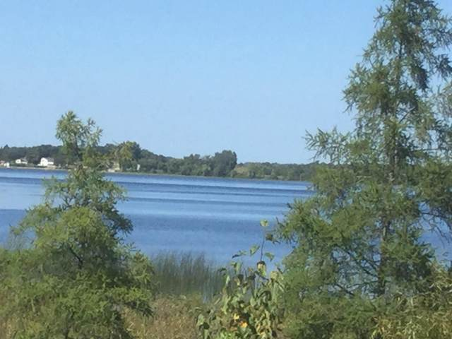 Birchdale Twp, MN 56336 :: The Preferred Home Team