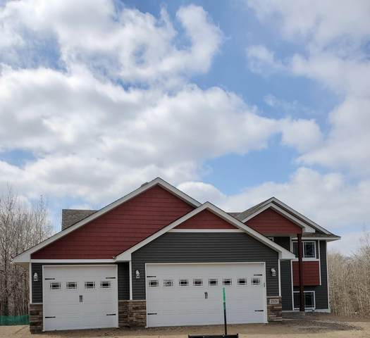 10866 305th Avenue NW, Princeton, MN 55371 (#5658587) :: The Odd Couple Team