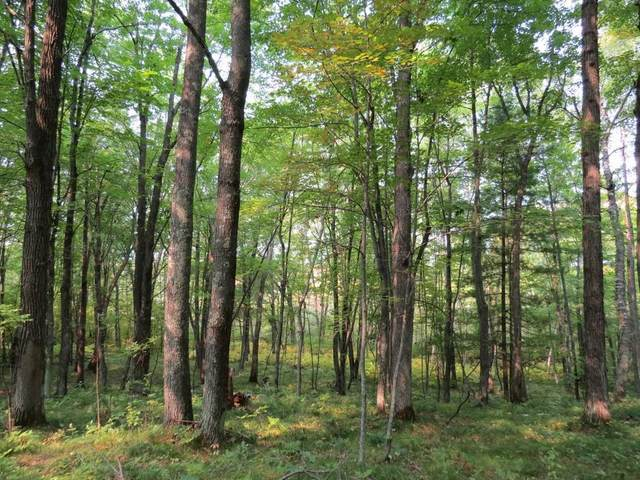 xxx County Road X, Webster, WI 54893 (#5659337) :: Servion Realty