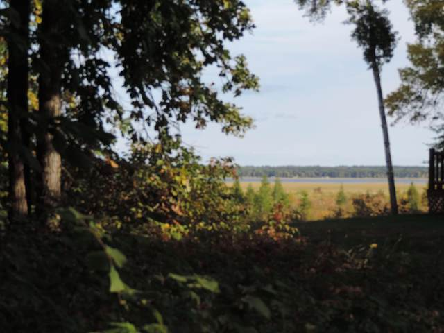 TBD Lot 14 Grouse Loop Nw, Walker, MN 56484 (#5661960) :: Bos Realty Group