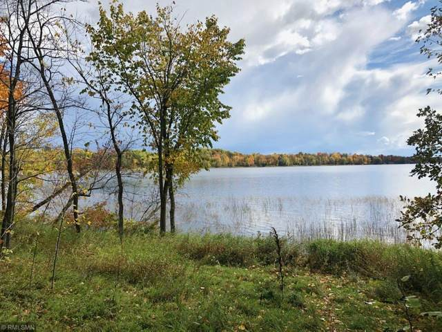 31866 Otter Place, Aitkin, MN 56431 (#5670956) :: Holz Group