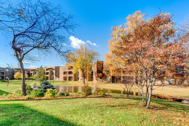 2220 Midland Grove Road #204, Roseville, MN 55113 (#5674234) :: Bre Berry & Company