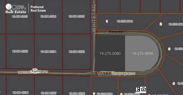 502 Mallard Lane, Foreston, MN 56330 (#5674741) :: Bos Realty Group