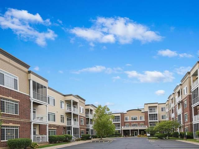 8200 W 33rd Street #308, Saint Louis Park, MN 55426 (#5676979) :: Happy Clients Realty Advisors