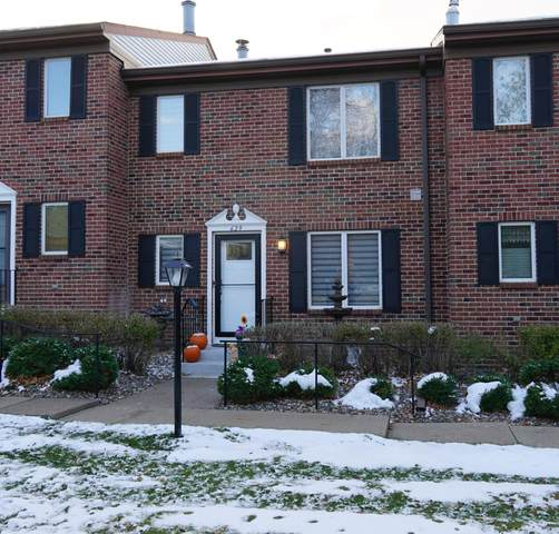 629 Maple Park Drive, Mendota Heights, MN 55118 (#5678832) :: Twin Cities South