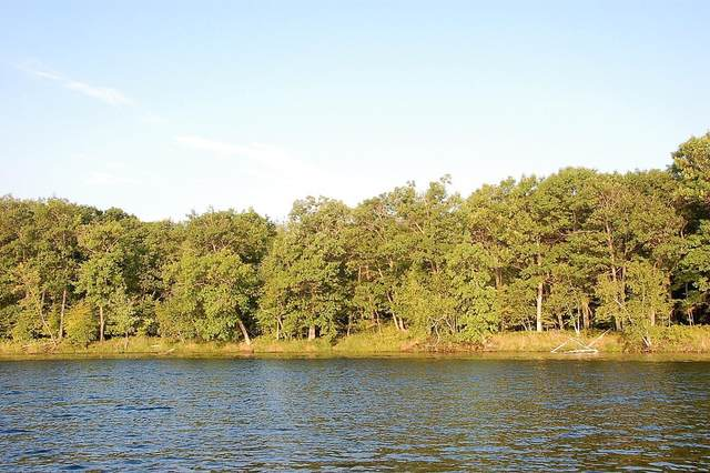 TBD Lot D Eaglewood Dr, Deerwood, MN 56444 (#5688060) :: The Pietig Properties Group