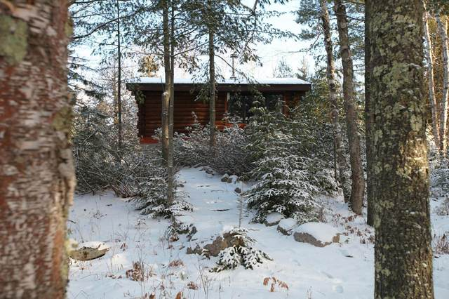 5263 Vermilion Trail, Gilbert, MN 55741 (#5695603) :: Holz Group