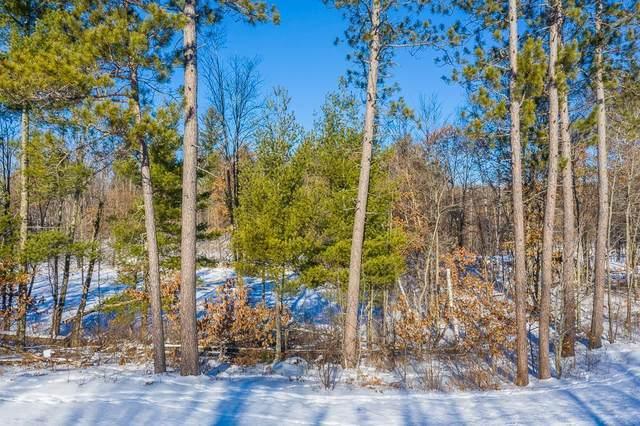 L11, B2 Cottage Wood Drive, Nisswa, MN 56468 (#5696596) :: The Pietig Properties Group
