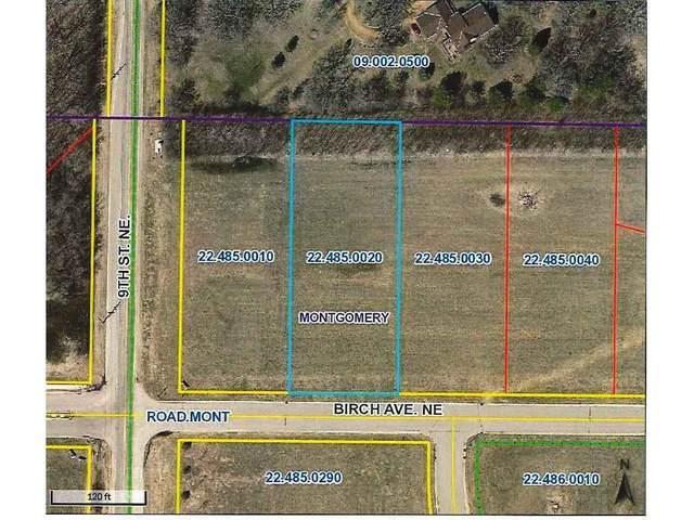 1005 Birch Avenue NE, Montgomery, MN 56069 (#5697740) :: Holz Group