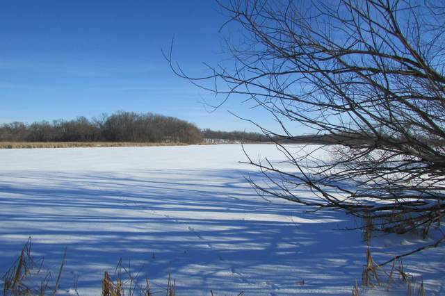 36 Acres Co Road 7 SW, Farwell, MN 56327 (#5698160) :: Lakes Country Realty LLC