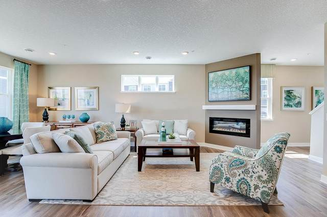 6563 Genevieve Trail, Cottage Grove, MN 55016 (#5698833) :: The Preferred Home Team
