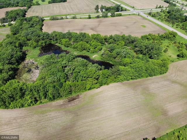 XXX8 Hudson Rd, Afton, MN 55001 (#5699113) :: Holz Group