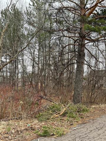 1212 N 98th Ave W, Duluth, MN 55808 (MLS #5699605) :: RE/MAX Signature Properties