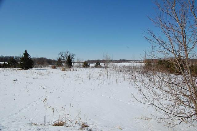 Lot 7 168th, Dresser, WI 54009 (#5700736) :: Bos Realty Group