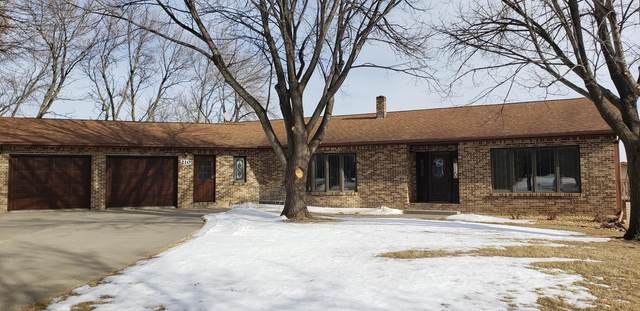 210 East Street, Trosky, MN 56144 (#5701536) :: Happy Clients Realty Advisors