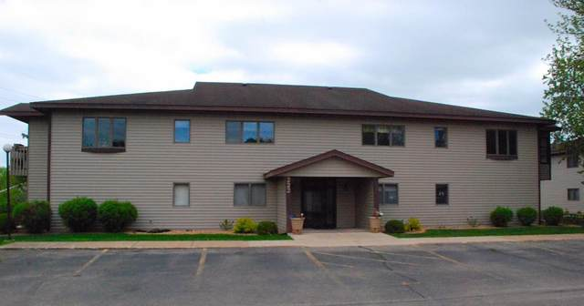 222 Sargent Drive #202, Red Wing, MN 55066 (#5701612) :: Servion Realty