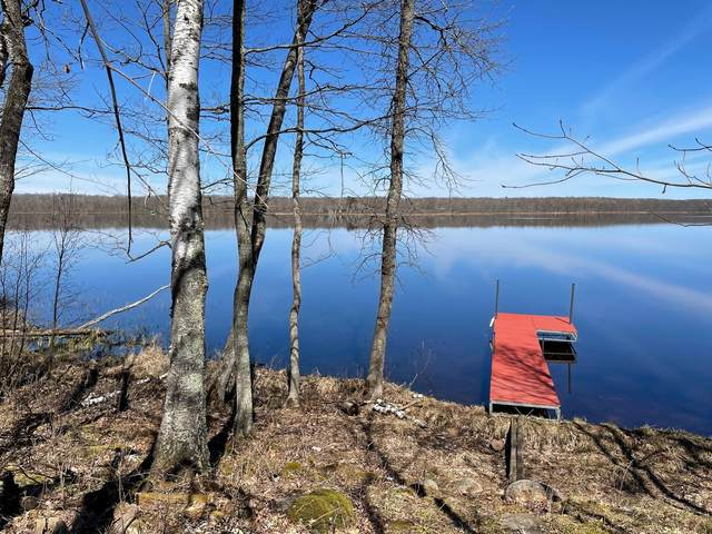 27206 Ross Lake Road, Aitkin, MN 56431 (MLS #5702003) :: RE/MAX Signature Properties
