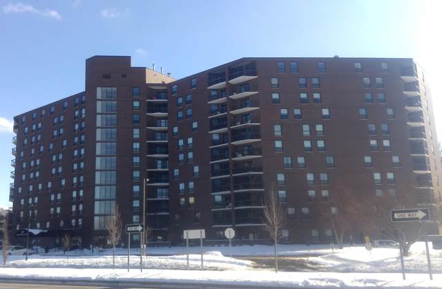 6615 Lake Shore Drive S #1106, Richfield, MN 55423 (#5702151) :: The Janetkhan Group