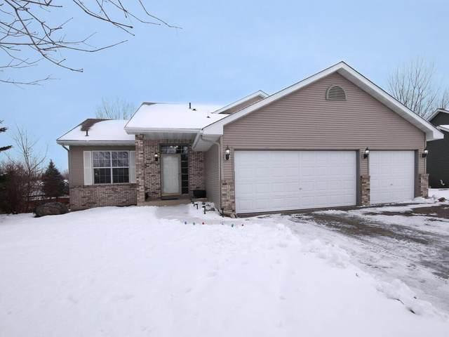 1007 Theresa Marie Drive, Elko New Market, MN 55054 (#5702584) :: Tony Farah | Coldwell Banker Realty