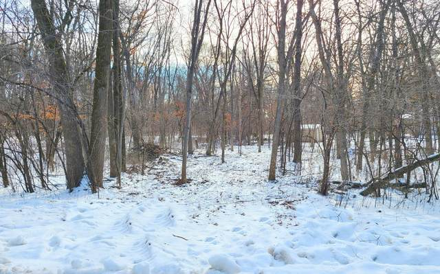Lot 3 N Sommers Street, North Hudson, WI 54016 (#5702786) :: Bos Realty Group