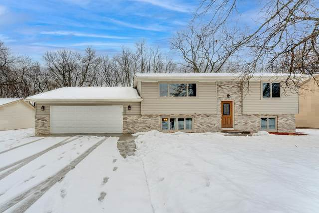 10828 Trenton Lane N, Maple Grove, MN 55369 (#5703322) :: Tony Farah   Coldwell Banker Realty