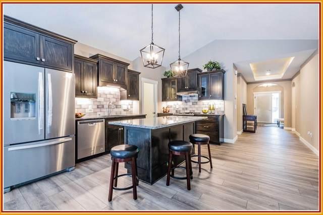 1113 115th Circle Ne, Blaine, MN 55434 (#5703834) :: Straka Real Estate