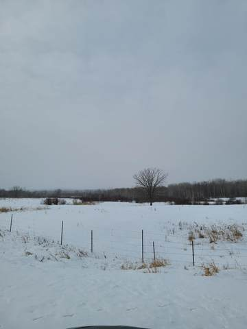 Tract 7 County Road 1, Pequot Lakes, MN 56472 (#5704332) :: The Pietig Properties Group