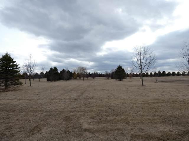 21 Lake Shetek Drive, Slayton, MN 56172 (#5705147) :: Straka Real Estate