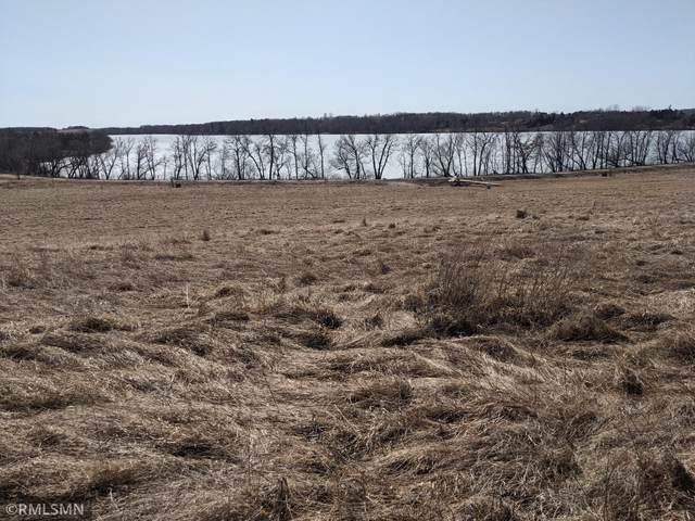 25220 204th Street, Long Prairie, MN 56347 (#5706278) :: Holz Group