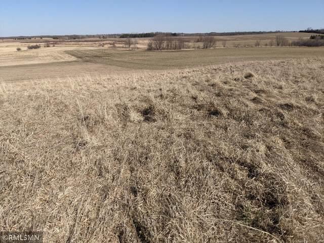 XXX Fitcher Drive, Long Prairie, MN 56347 (#5706315) :: Holz Group
