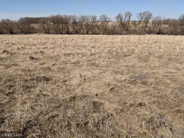 XX Fitcher Drive, Long Prairie, MN 56347 (#5706352) :: Holz Group