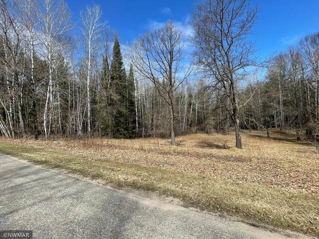 TBD Rolling Hills Drive NW, Northern Twp, MN 56601 (#5720800) :: Twin Cities Elite Real Estate Group | TheMLSonline