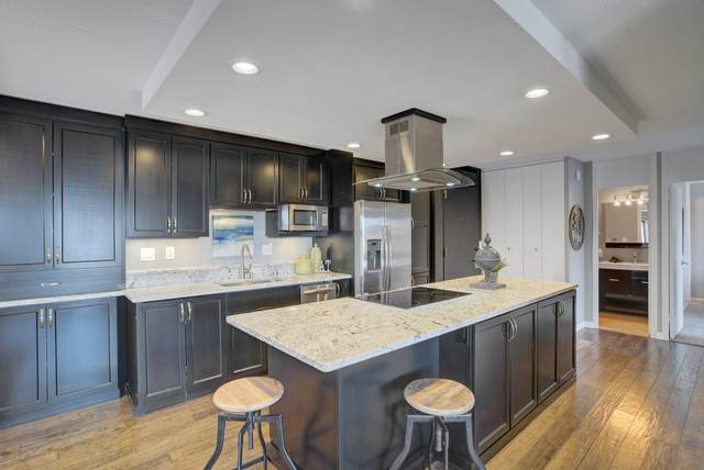 15 S 1st Street A719, Minneapolis, MN 55401 (#5729335) :: Helgeson & Platzke Real Estate Group