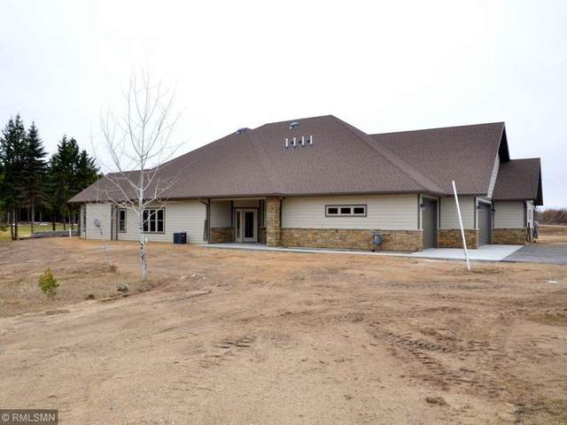 12351 Blueberry Loop, Menahga, MN 56464 (#5729568) :: Twin Cities Elite Real Estate Group | TheMLSonline
