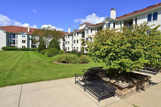 1666 Coffman Street #233, Falcon Heights, MN 55108 (#5729936) :: Twin Cities South
