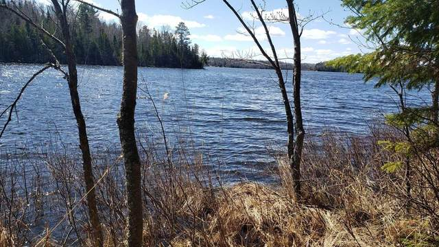 tbd Forest Rd 203, Camp 5 Twp, MN 55711 (MLS #5731216) :: RE/MAX Signature Properties
